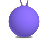 Plain 66cm Adult Space Hopper Purple
