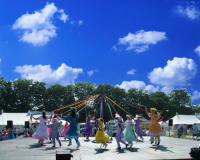 3m Tall Maypole Upto 12 People